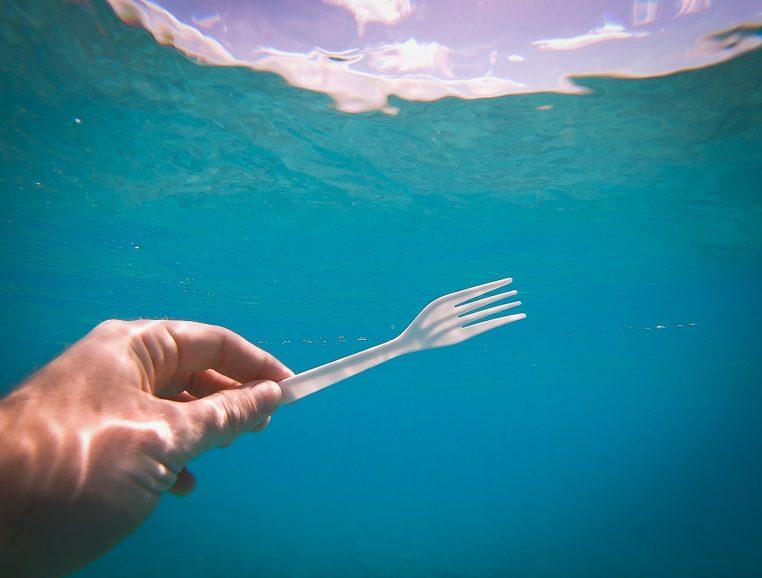 Fourchette sous l'eau