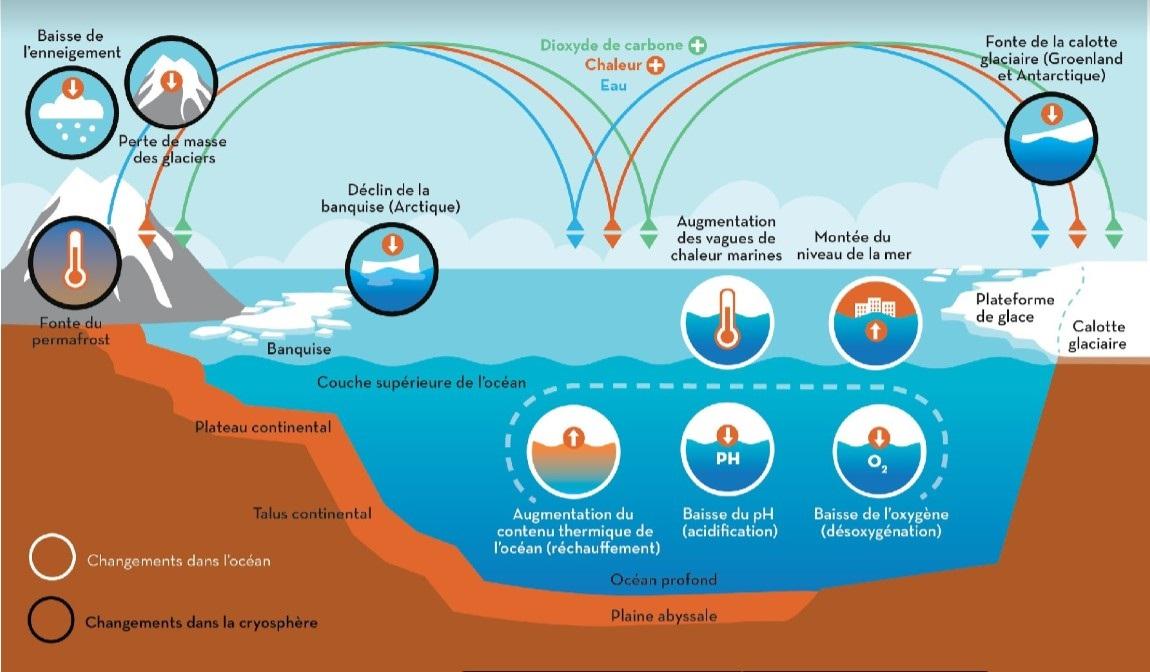 Systeme oceanique