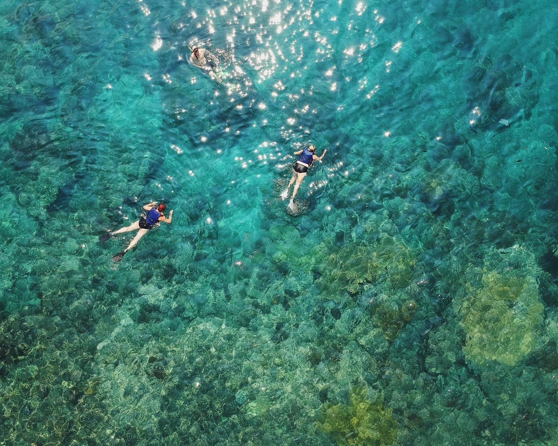 Nageur océan Coraux