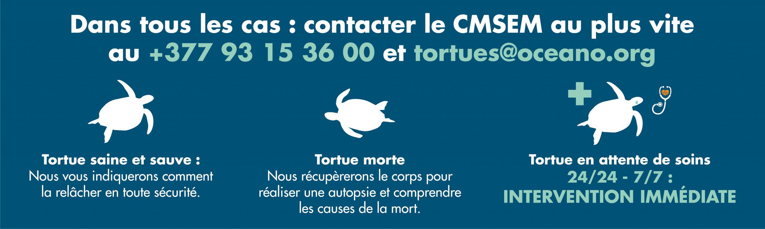Contacter le CMSEM