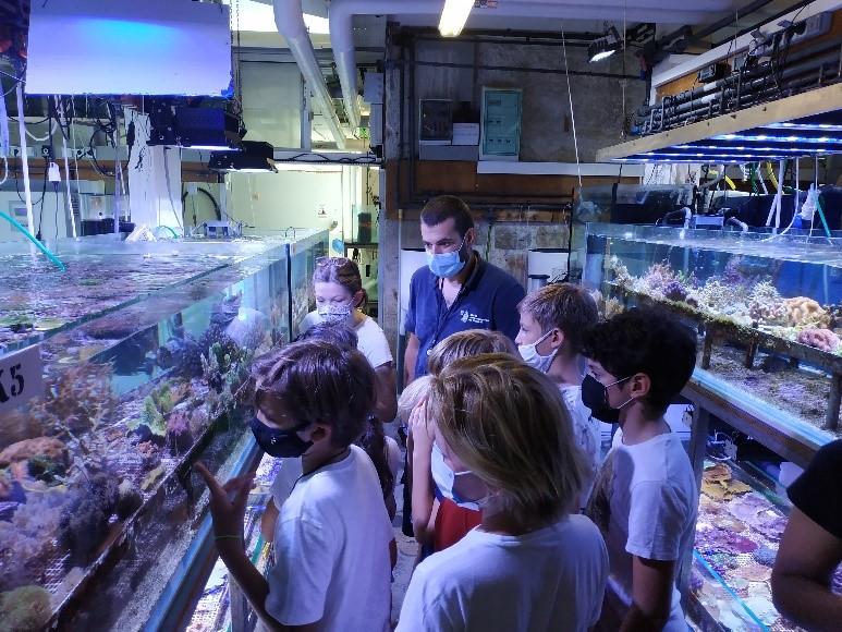 Oceano Pour Tous - les enfants-découvrent la réserve de l'Institut océanographique